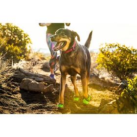 Ruffwear Hoopie Accesorios para perros, lotus